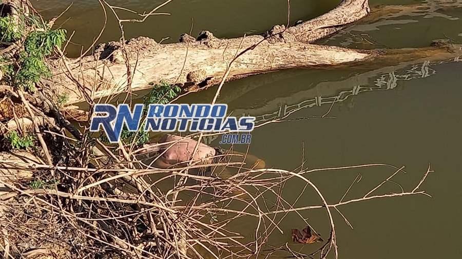 Corpo de homem é encontrado embaixo da ponte do Rio Candeias