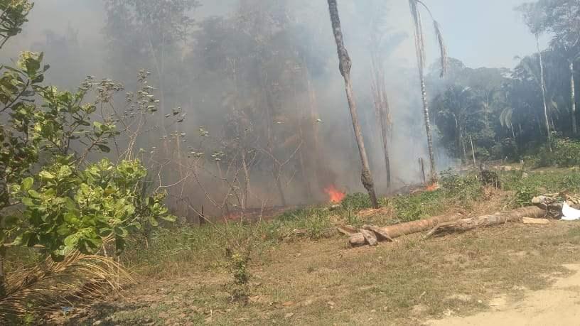 Fogo consome Fazenda Belmont desde a noite de ontem, 28, em Porto Velho